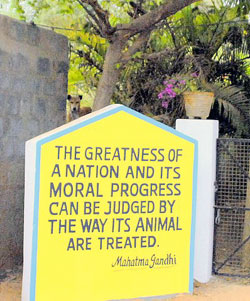 Sign outside VSPCA front gate