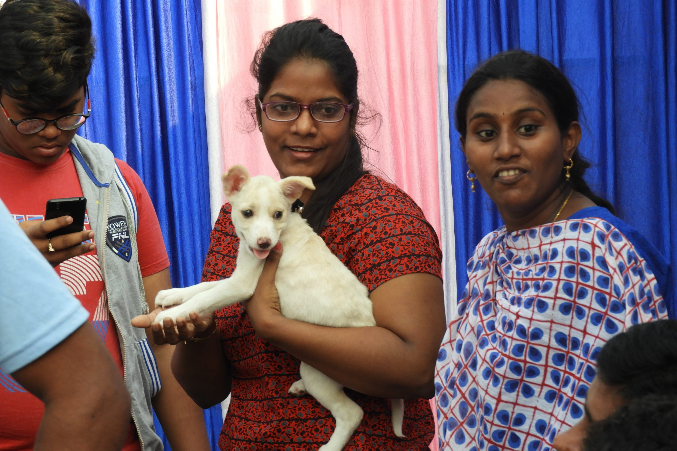 Adopt an All-Indian Dog or Cat