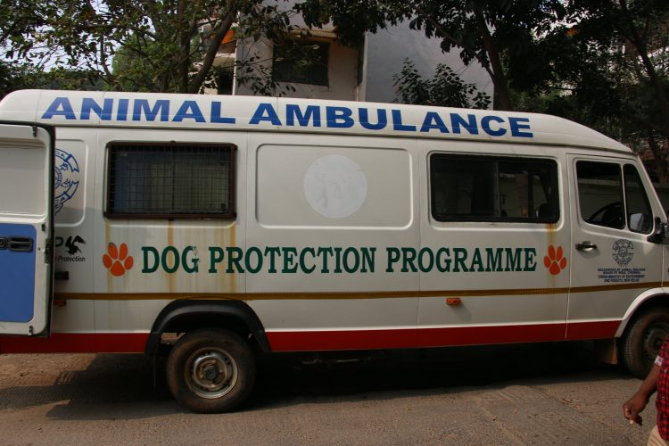 A Unique Mobile Ambulance Services Program (Mobile Camp)