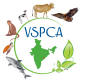 Visakha SPCA India, Inc.